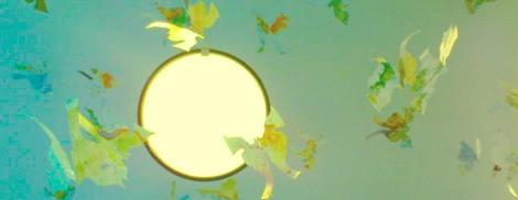 mapbutterflieslight
